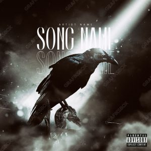 Night Raven cover art